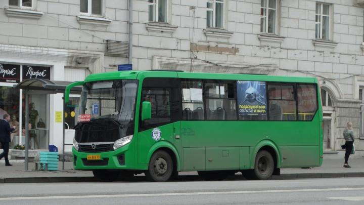 В Екатеринбурге возродят маршрут до Солнечного, который был заброшен перевозчиком
