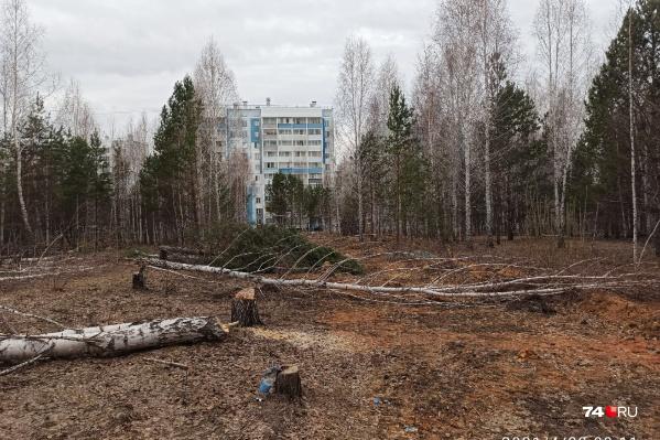 Деревья снесли на участке около дома на улице Хариса Юсупова, 62