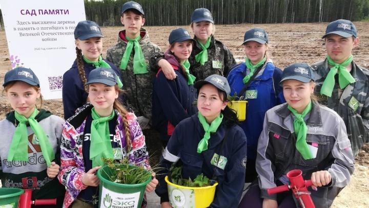 В память о погибших в Великой Отечественной войне волонтеры ГК «Титан» посадят саженцы хвойных деревьев