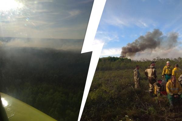"""С начала пожароопасного сезона в Югре зафиксировали возгорания на территории больше 1<nobr class=""""_"""">5 ты</nobr>сяч гектаров"""