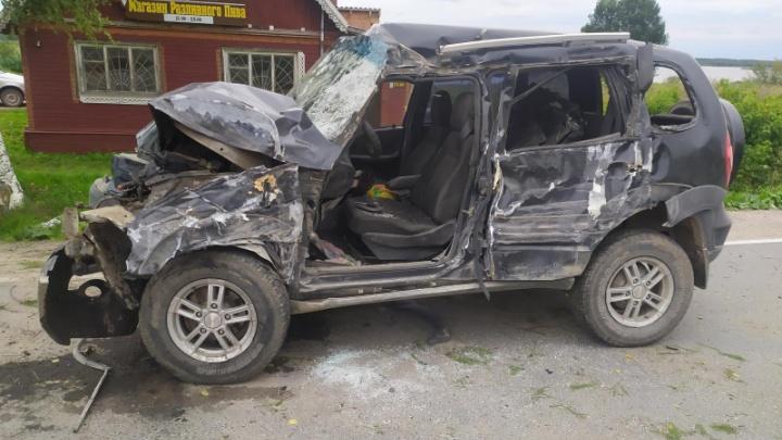 В Каргополе погиб водитель, врезавшийся в дерево