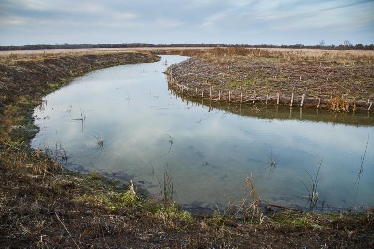 В Волгоградской области возбудили очередное уголовное дело по факту хищения 48 миллионов рублей по нацпроекту «Экология»