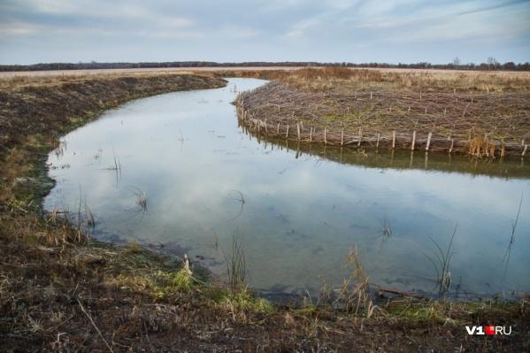 УФСБ и прокуратура обнаружили очередные хищения по нацпроекту «Экология»
