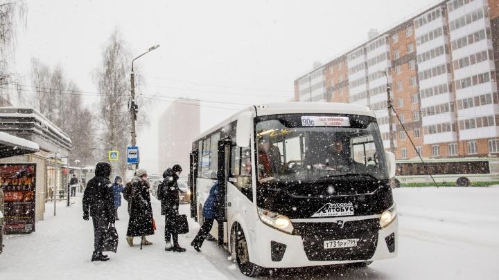 Идет вторая волна морозов: синоптики предупредили ярославцев о температурных качелях