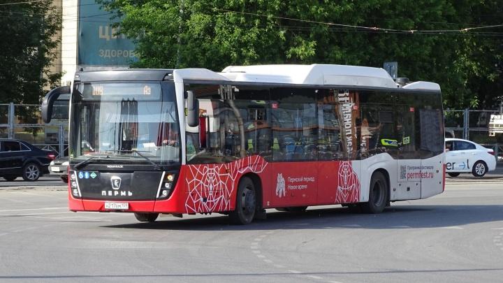 В автобусах маршрута № 108 от автовокзала до аэропорта Большое Савино изменится стоимость проезда