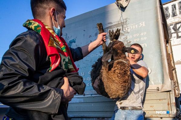 В этот день по традиции в жертву приносят животное, чаще всего — барана
