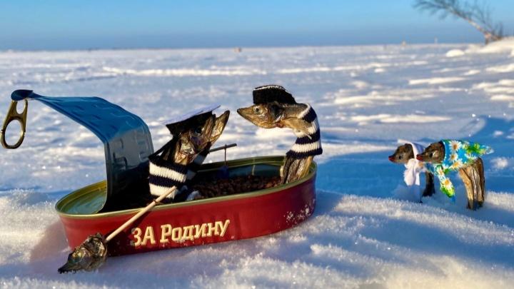 Когда закончилась мойва, перешла на корюшку: посмотрите, как северодвинка наряжает рыбу в костюмы