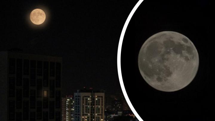 Луна максимально приблизилась к Земле: публикуем 15 фото суперлуния в небе над Екатеринбургом