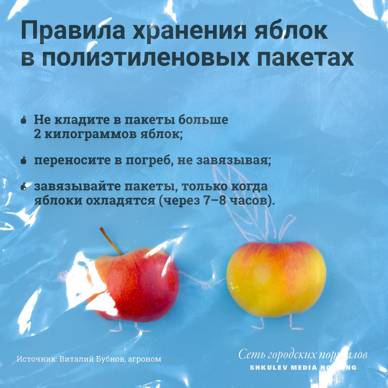 Яблоки можно хранить и в полиэтиленовых пакетах. Если знать как