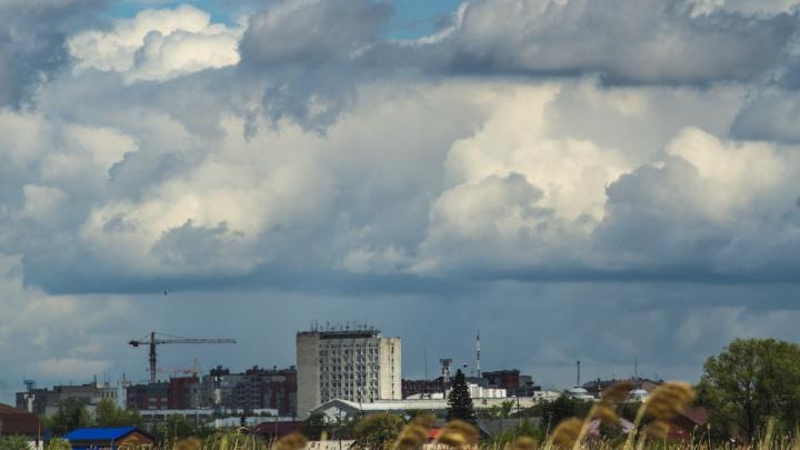 В Омске 9 дней подряд фиксируют выбросы фенола и сероводорода