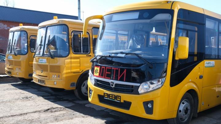 Пермский край получит 140 современных школьных автобусов от правительства России