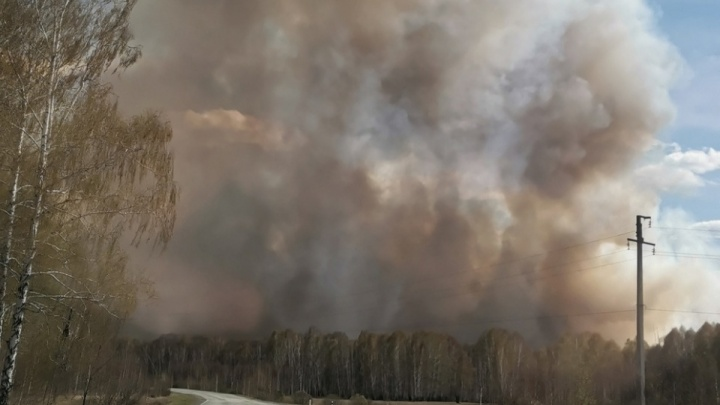 В Челябинской области в разгар горячего сезона уволились сотрудники лесопожарной станции