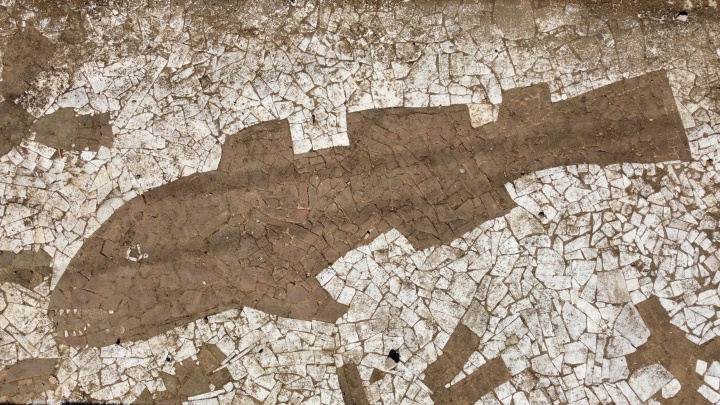 Ручная работа на дне. Показываем уникальную мозаику, пока в фонтане у Дворца спорта нет воды