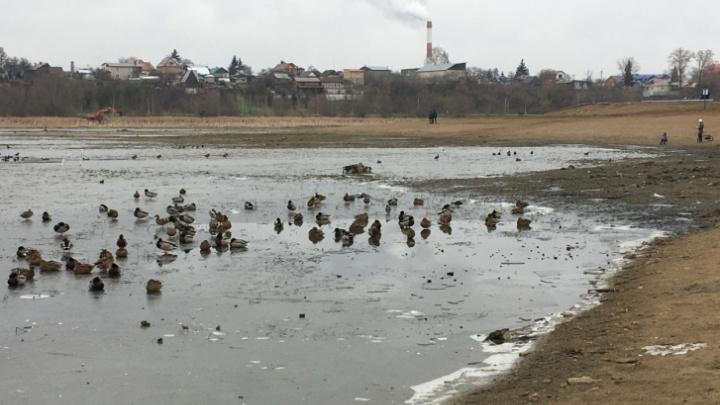 В Уфе суд признал законной передачу земель у озера Кашкадан под жилую застройку