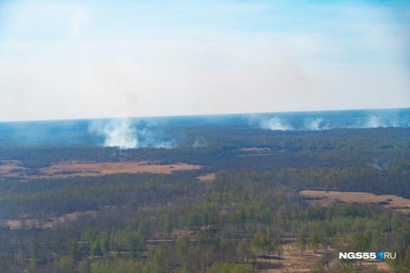 Из-за лесных пожаров в Омской области этой весной возникло уже очень много проблем