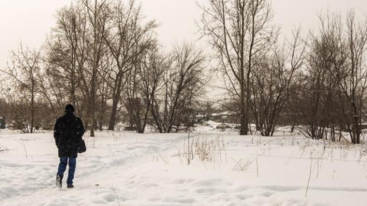 Анатолий Локоть объяснил, почему пустырь в Академгородке продали без торгов