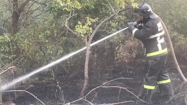 В Волгоградской области ликвидировали крупный степной пожар