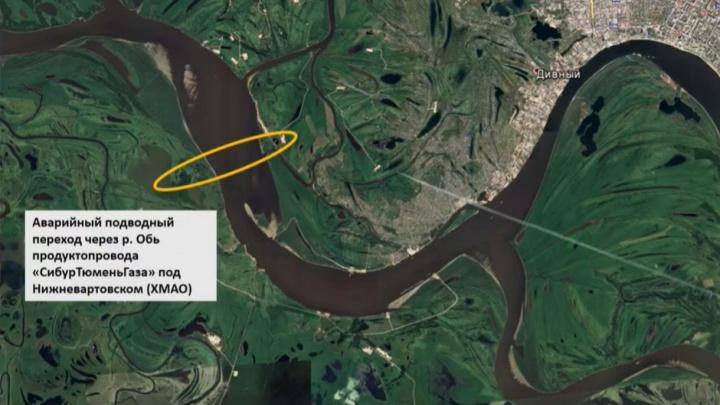 WWF: если утечка газа в ХМАО началась за две недели до взрыва, экологический ущерб возрастет