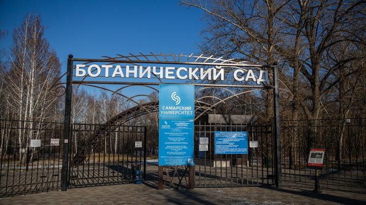 Стали известны сроки открытия Ботанического сада для посетителей