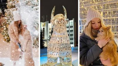 С денежным быком и в кресле Деда Мороза: где архангелогородцы делают яркие снимки для Instagram