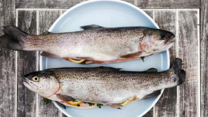«Рыбныймир55»снизил цены на диетическую рыбу, чтобы поддержать омичей во время Великого поста