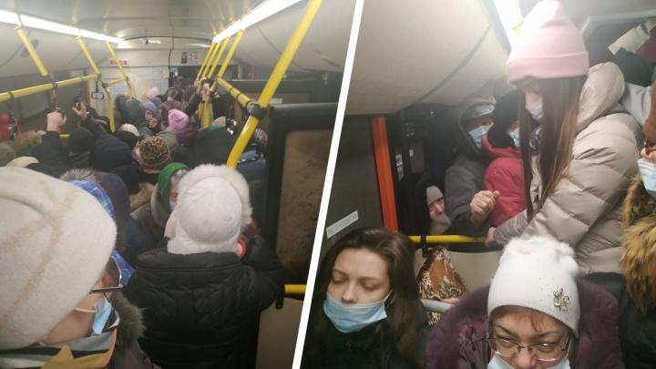 «Выезд с Плющихинского — это лотерея»: гневная колонка сибирячки про ежедневную давку в автобусе