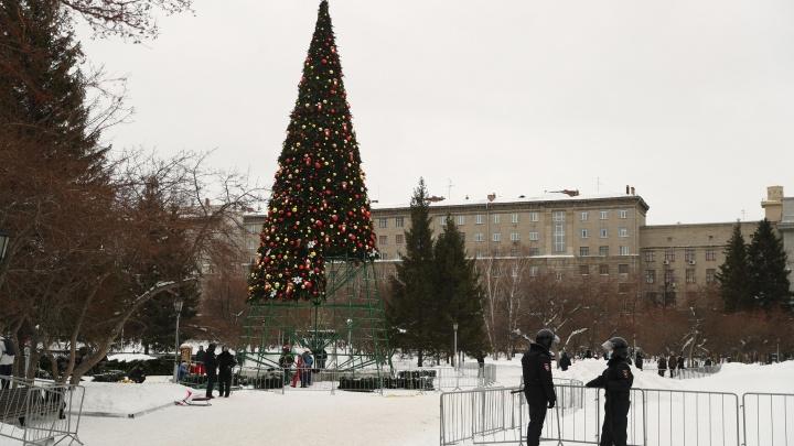Главную елку Новосибирска начали разбирать — 10 фотографий с места