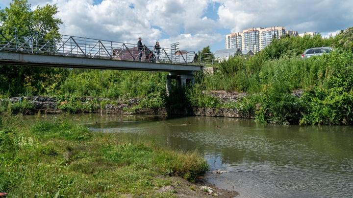 Амазонка левого берега: путешествие по берегам самой длинной речки Новосибирска — взрывал ли Колчак здесь мост