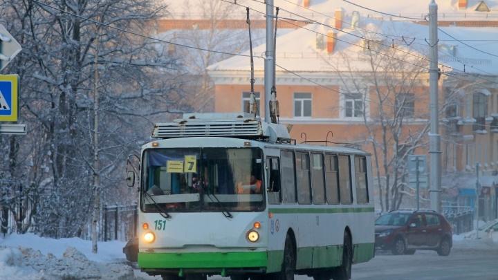 В Березниках ищут очевидцев того, как кондуктор высадил из троллейбуса школьника без маски в мороз