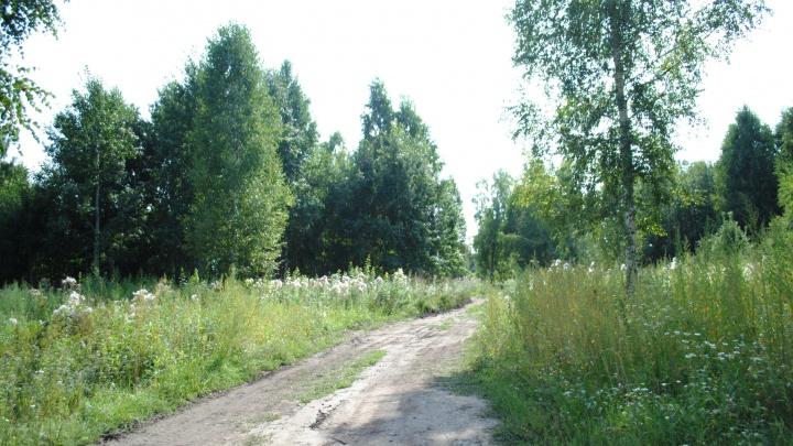 Застройщик приличных коттеджных поселков в Каменке отказался делить свою дорогу с многодетными и инвалидами