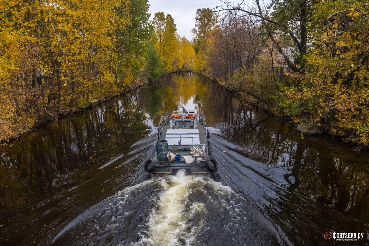 Неплохо для конца октября: в Петербурге…