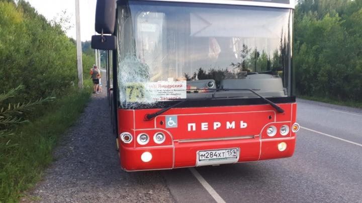 В Перми автобус сбил шедшую по обочине девушку с ребенком. Ее муж ищет очевидцев