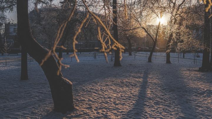 Какая погода ожидается в Прикамье в феврале? Прогноз от ГИС-центра