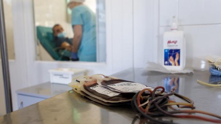 «Они даже не знают, что переболели»: у 60% доноров крови в Волгограде находят антитела к COVID-19