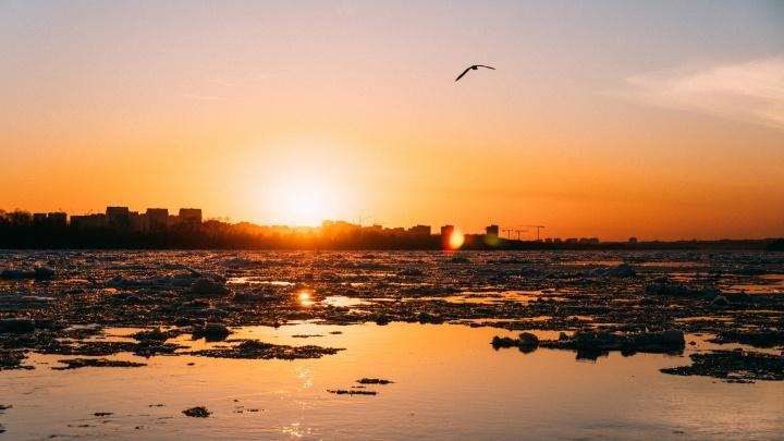Иртыш полностью освободился ото льда: фоторепортаж ледохода в Омской области