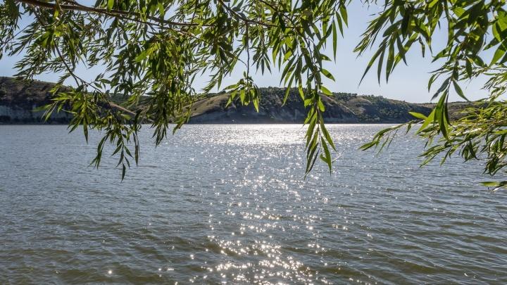 В Волгоградской области две девочки утонули, упав с бревна в воду на диком пляже
