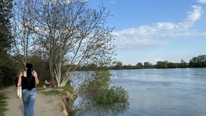 Обвал берега и тонущие деревья: краснодарцы пожаловались на состояние парка в ЮМР