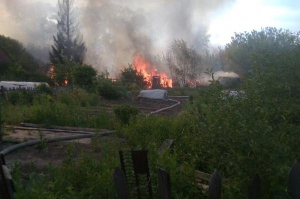 Огонь потушили в садах «Дружба»