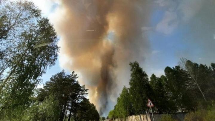 Самый крупный лесной пожар ликвидировали в Тюменской области, предстоит потушить еще 16