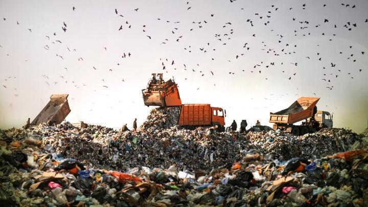 Капля в море отходов: сколько мусора собрали за год на стихийных свалках Новосибирска (впечатляющая инфографика)