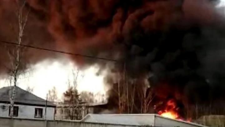Клубы черного дыма: как в Ярославле горел склад пиломатериалов— фото и видео