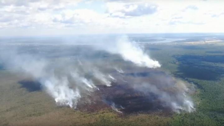 Пермь накрыло дымом от горящего мха под Краснокамском. Когда он рассеется?