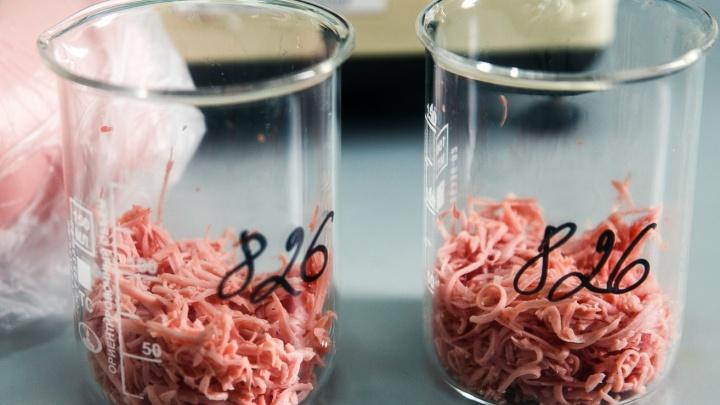 В фарше, который предназначался для обедов тюменских студентов, нашли антибиотики
