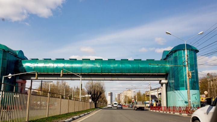 Больше надземных переходов и ограждений: ГИБДД предложила новые меры для безопасности дорог Ярославля