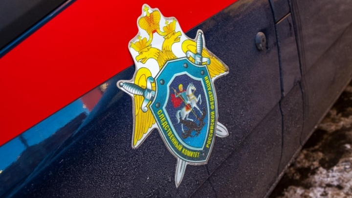 В Кузбассе в кустах нашли тело недоношенного младенца: комментарий СК