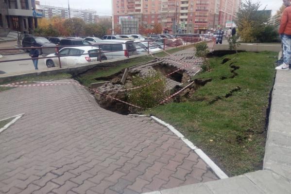 В яму провалилось дерево