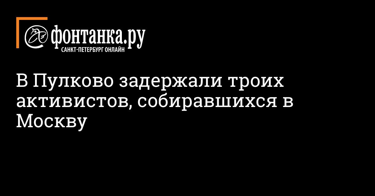 В Пулково задержали троих активистов, собиравшихся в Москву