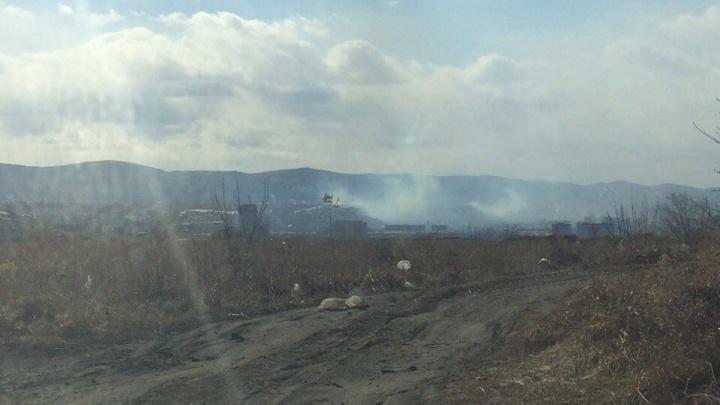 Сезон лесных пожаров в Красноярске начался с поджога сухой травы на Кузнецовке