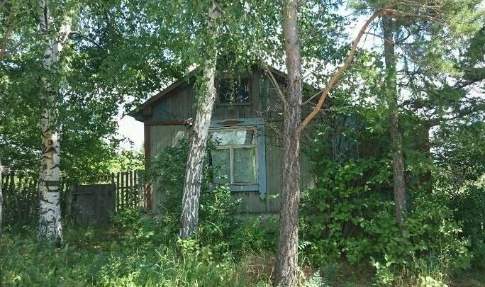 Красноярцы активизировались в поисках дач на лето для аренды