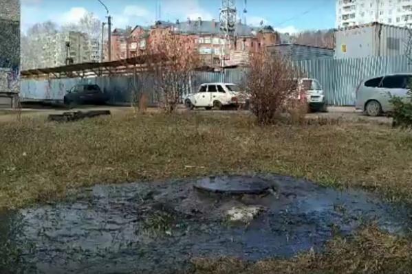 Зловонные лужи в Академгородке